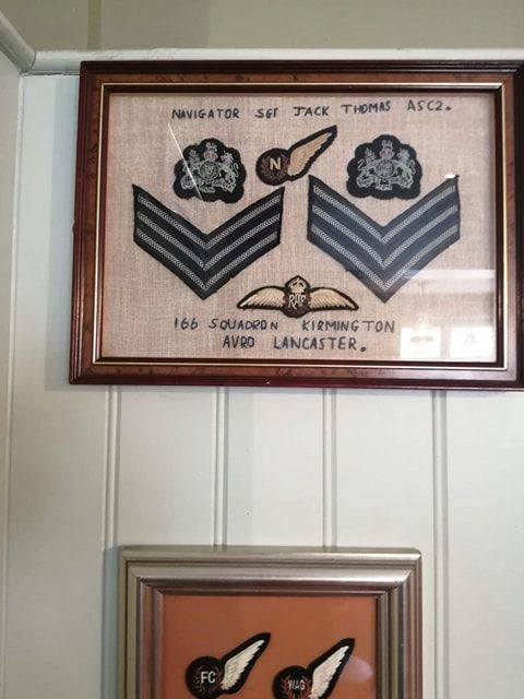 RAF Insignia displayed in a frame